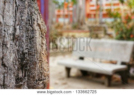 Blurry unfocused bench of concrete material for sitting and relaxation beside focused tree trunk.
