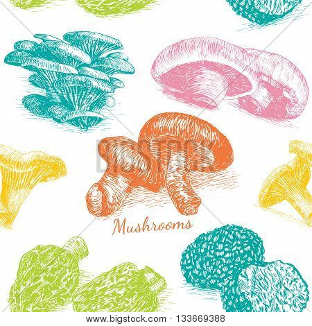 Vector mushrooms colorful background set 2. Illustrative sorts of mushrooms in seamless background