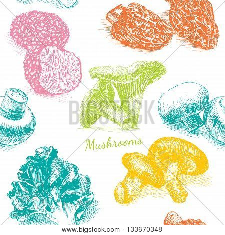 Vector mushrooms colorful background set 3. Illustrative sorts of mushrooms in seamless background