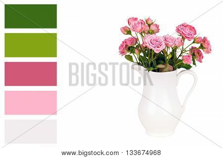 Pink flowers in white jug and palette of colors. Roses in jug. Pink roses. Pink roses in a white vase on white background in a colour palette with complimentary colour swatches..