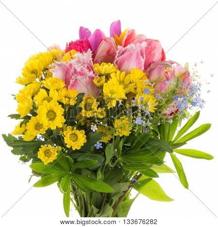beautiful colorful bouquet of colorful with bright colorful fringed tulips forget-me-and yellow chrysanthemums on a white background isolated