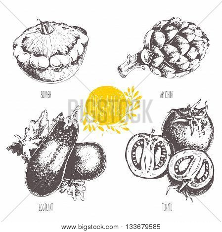 Series - vector fruit and spices. Hand-drawn illustration. Sketch. Healthy food. Linear graphic. Set of artichoke, tomato, eggplant, courgette.
