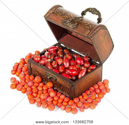 Casket of rosehip and rowan berries isolated on white background.