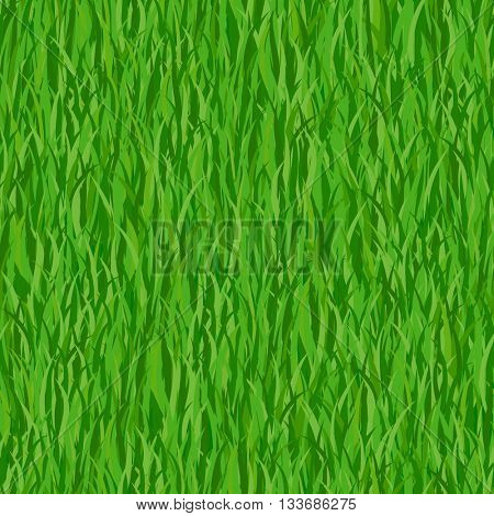 Green grass seamless pattern background