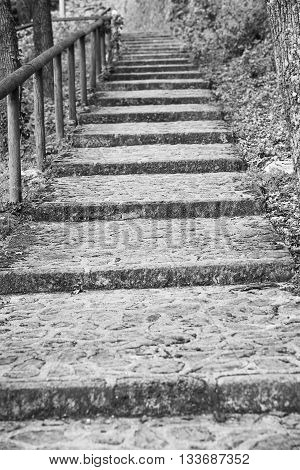 Ancient stone staircase and a wooden railing in the park area.