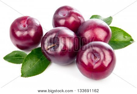 Fresh plums with green leaves still life of ripe fruits isolated on white background