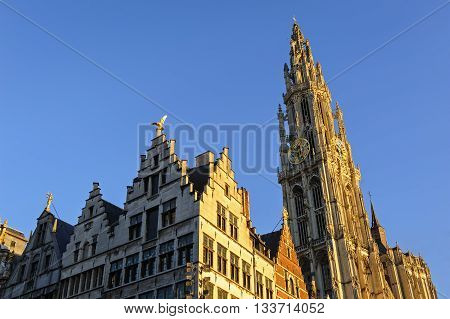 Cathedral and buildings with golden figures on the roofs in the center of Antwerp, Belgium