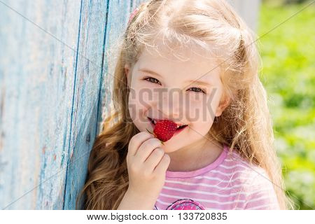 Happy small child eating strawberries outdoors in summer time