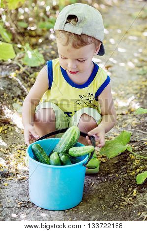 Little boy with cucumbers in a bucket sitting on a bed