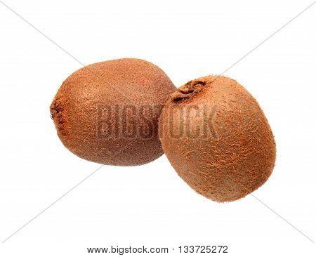 Two kiwi fruits isolated on white background