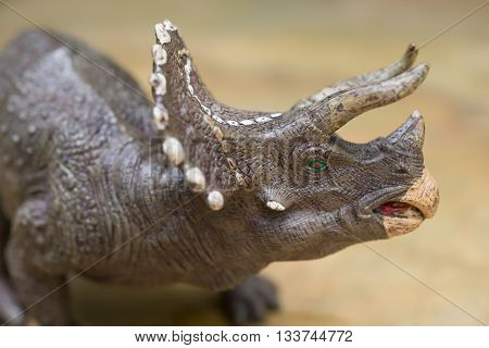 grey triceratops toy standing on rock close up