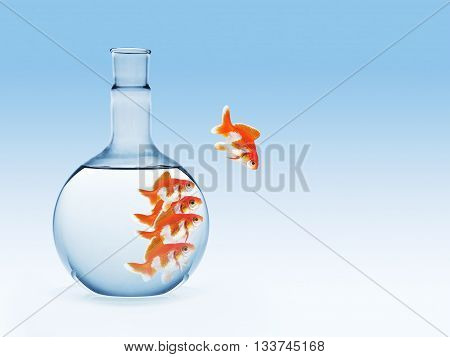 golden fish on chemical laboratory glassware on blue gradient background business concept leader in risk among other.