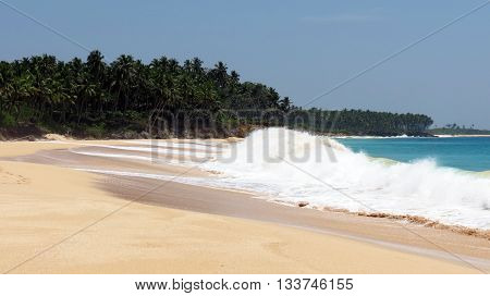 Tropical sea beach in Andaman and Nicobar Islands, India, Asia.