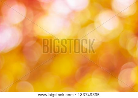 color tone blurred nature background. light and the sky to make it shone through the leaves. Pastel color Blurred nature background.Backdrop with color and bright sun light. Summer holidays concept.bokeh or Christmas background.Green Energy.