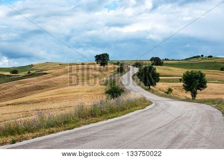 Asphalt Road Winding Through Hills