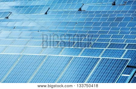 Solar Panels In A Close Up Full Frame View