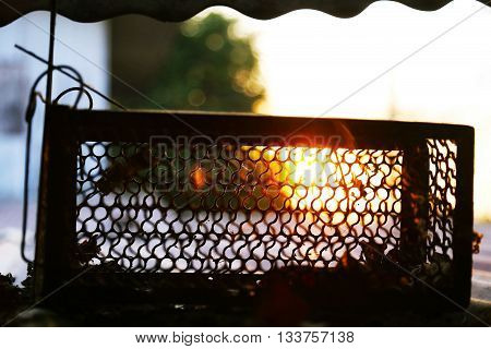 Cage mousetrap on sunset background in Thailand