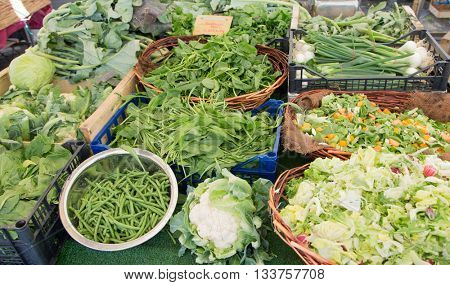 Large assortment of herbs and vegetables on the market counter.
