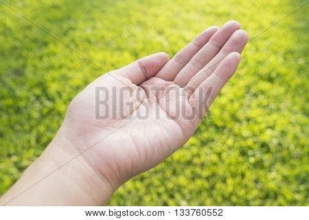 Open empty woman female hand on green field background