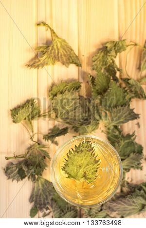 Glass Of Nettle Tea