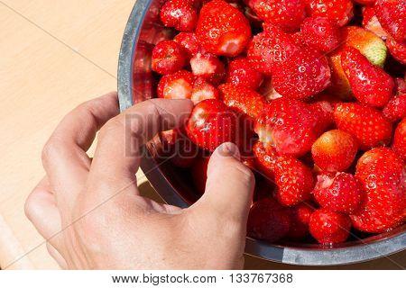 Picking Up Strawberries