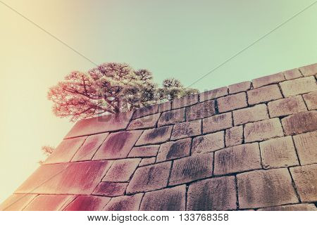 The foundation of a Castle tower of the Edo-jo Castle,Japan  ( Filtered image processed vintage effect. )