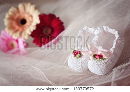 White knit baby booties decorated with flowers and ribbons with gerberas in the background