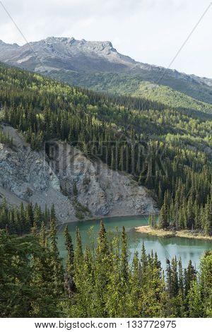 The Nenana River flows through Alaska's Denali National Park