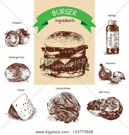 Vector illustration of classic burger ingredients. Hand drawn sepia illustration on white background