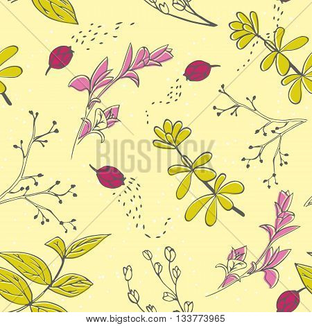 Vector seamless pattern with hand drawn herbs. Background in yellow pink and green colors. Spring and summer background