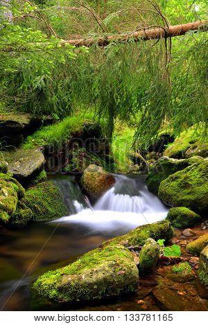 Mountain creek in the National park Sumava-Czech Republic
