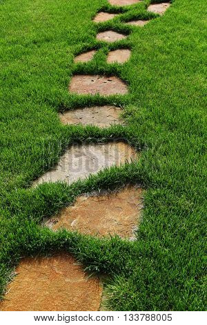 Stone path on the a  green grass.