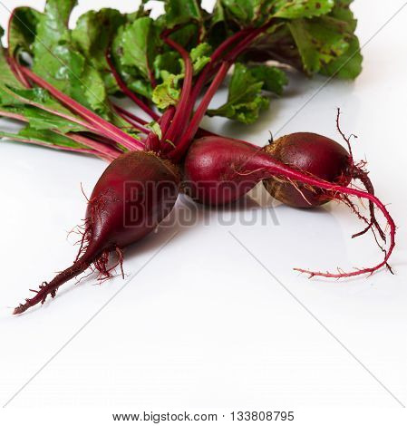 beet closeup on white background top view square