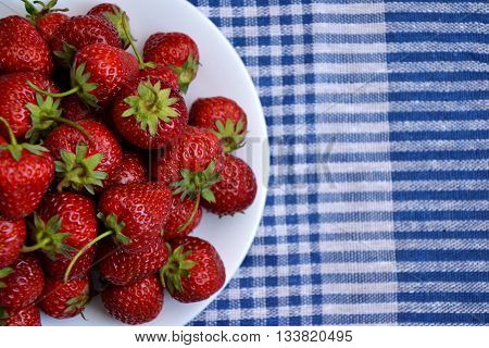 Strawberry Berries Country Garden Fresh Organic Harvest Spring 3