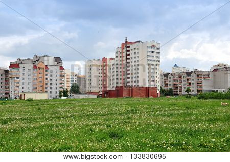 Modern residential district. Different high-rise apartment buildings and green grass with dandelions in the foreground.