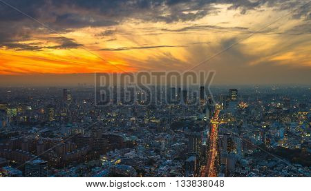 Highly detailed sunset aerial panoramic view of Tokyo