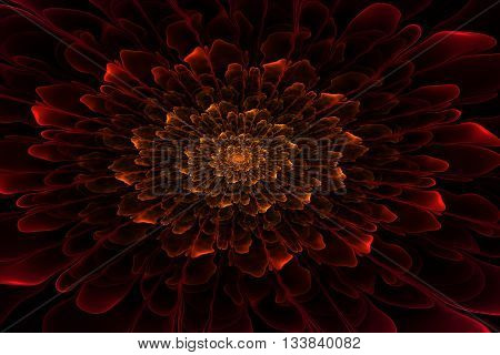 On this picture is the most beautiful fractal, that you have ever seen. You can use him on image on a wall, it will be very good decoration.