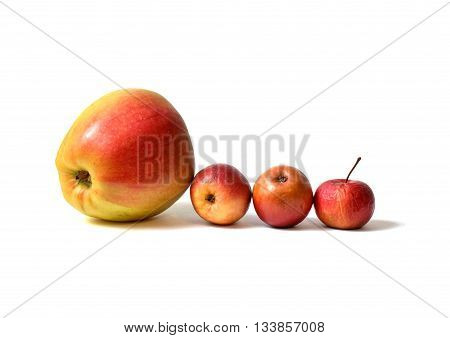 four apples - one big apple from shop and three homemade small apples all on white background