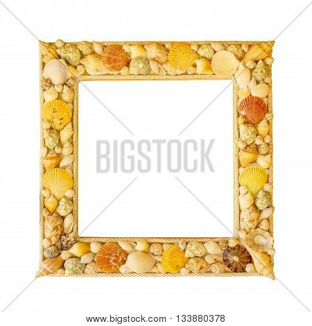 Shabby picture frame with blank space inside and shells on white background