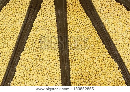 Soy beans are piled together for grain background.
