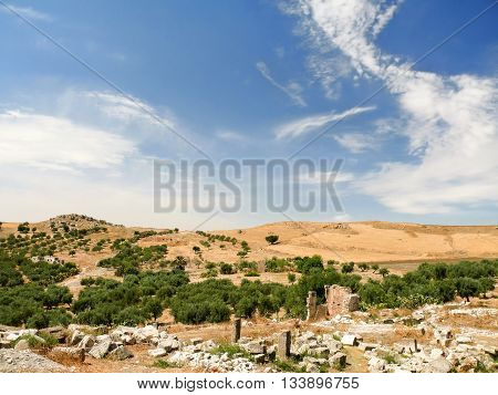 Olive groves around ancient ruins of roman City of Dougga Tunisia. Bright blue day with sun and clouds.