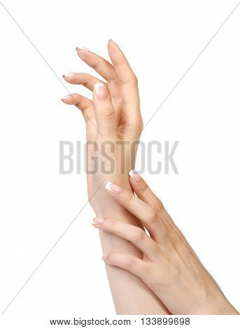 Female Hands With French Manicure