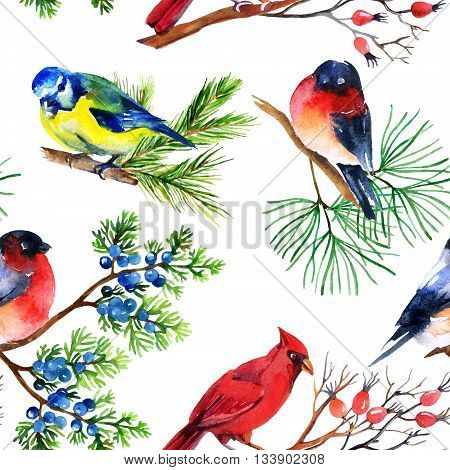 Watercolor seamless pattern with bullfinch titmouse cardinal and sparrow on branches. Hand painted illustration