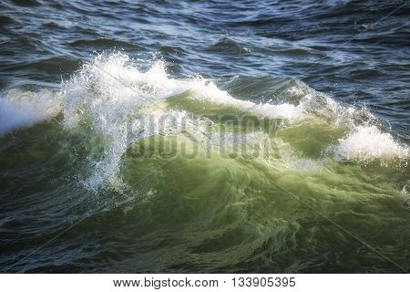 Beautiful Crest Of Ocean Wave Crashing At Sunset With Backlighting