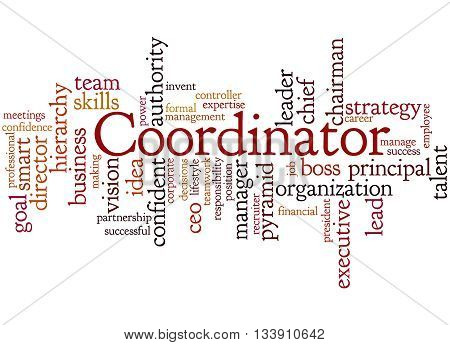 Coordinator, Word Cloud Concept 9