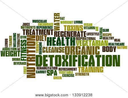 Detoxification, Word Cloud Concept 4