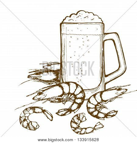 Beer glass and shrimps. Hand-drawing mug of beer and shrimps. Vector.