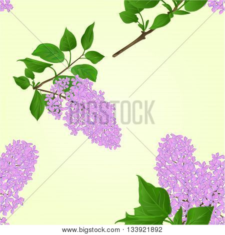 Seamless texture Lilac twig with flowers and leaves natural background vector illustration
