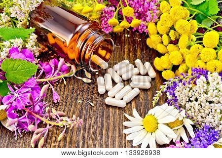 Capsules in a brown jar and on the table, fresh flowers of fireweed, tansy, chamomile, clover, yarrow, meadowsweet, mint leaves on a background of dark wooden board