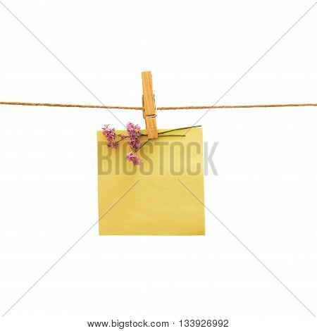Yellow reminder and violet flower with clothes peg over white